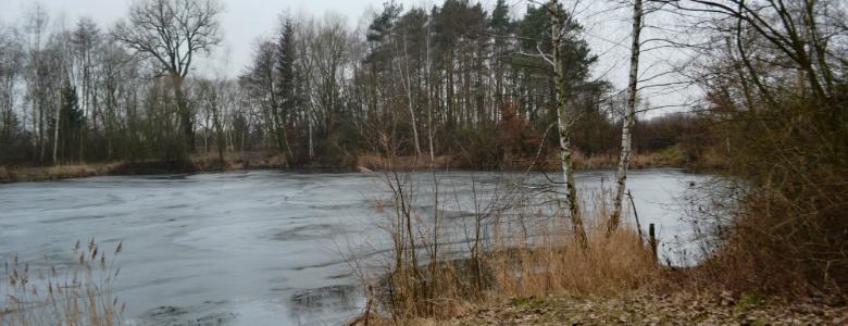 rybník Sukorady (6)