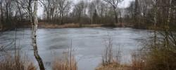 rybník Sukorady (7)